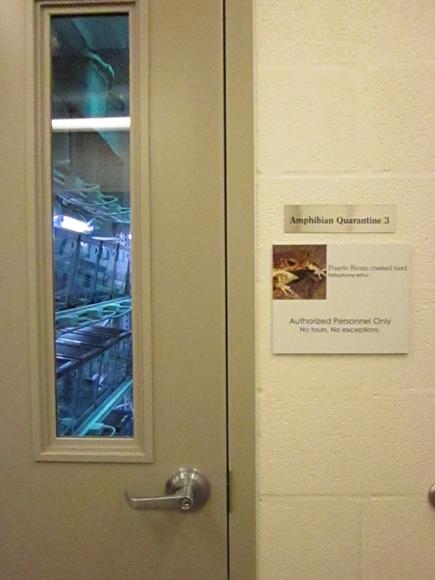 FWZ PRCT Breeding Room